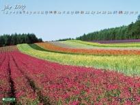 7月の北海道.jpg